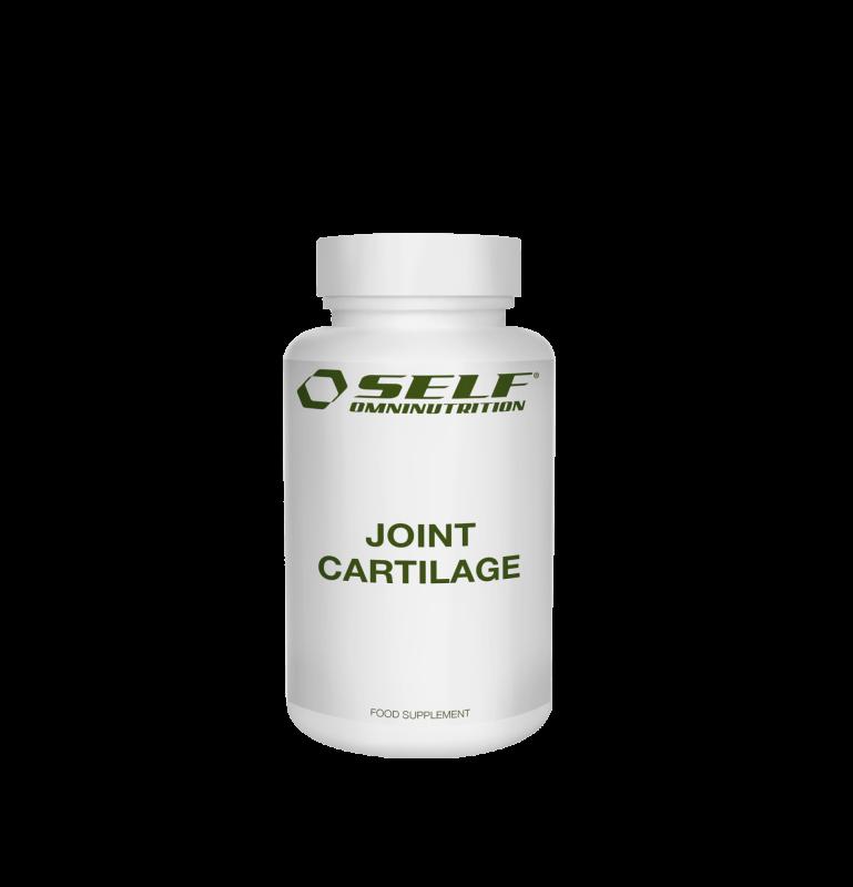 99025 joint cartilage 120 comp